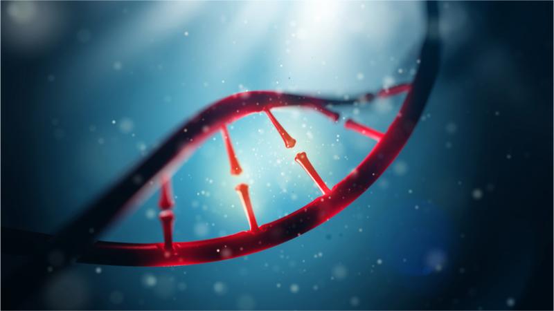 上越教育大学公開講座 遺伝の仕組み