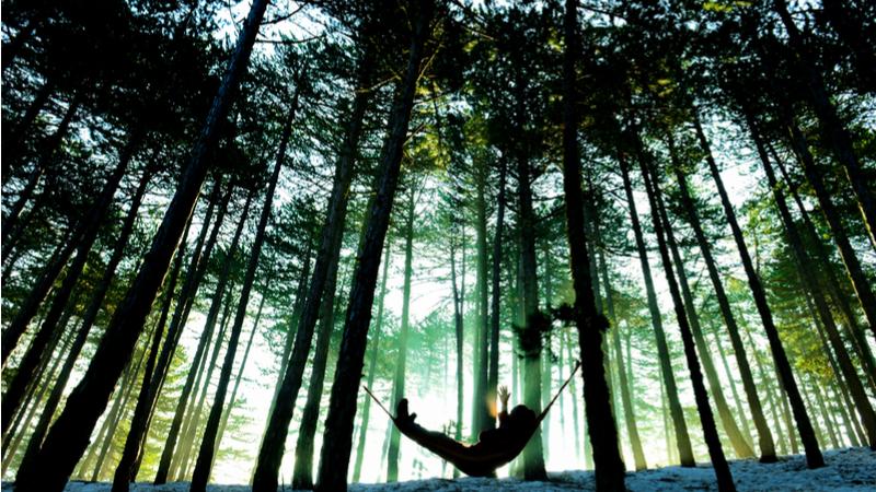 岐阜県山県市北部でまったり2017〜秋・冬〜「大自然を感じる腰掛けハンモック作り体験」