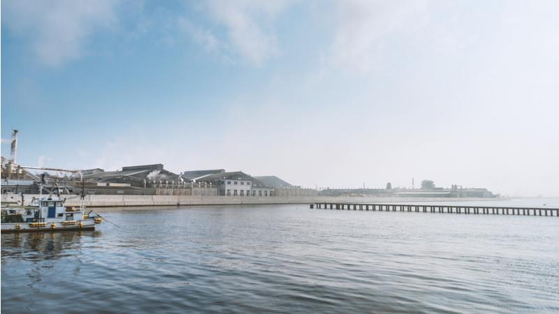 【東京農業大学】三陸漁村探訪・津波被災から免れた奇跡の漁村集落を歩く