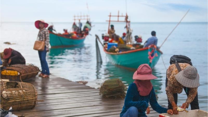「漁業・水産業で活躍する女性を応援するプロジェクト」の名称公募