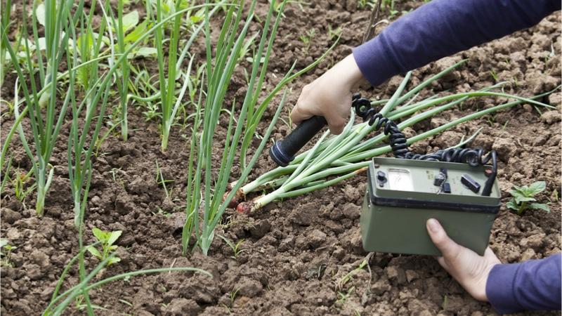 東京農業大学 東日本支援プロジェクト 調査研究報告会 「南相馬市の山林の放射線量の変化」(2012-2018)