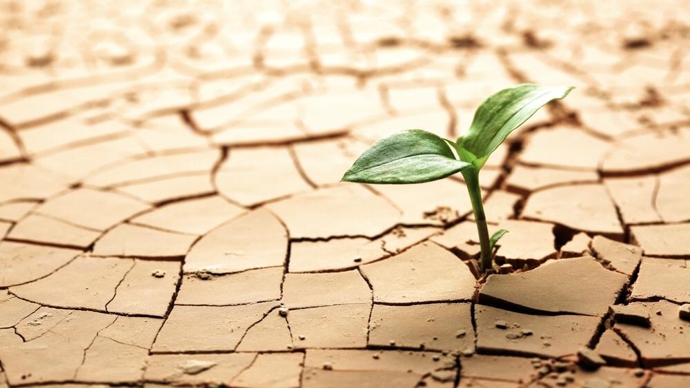 「沙漠xソーラー、太陽・水・土の共生」シンポジウム