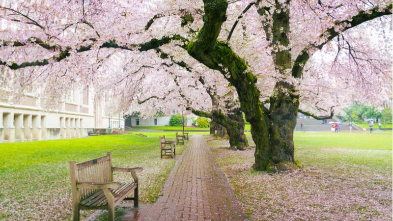 国士舘大学 春のオープンキャンパス