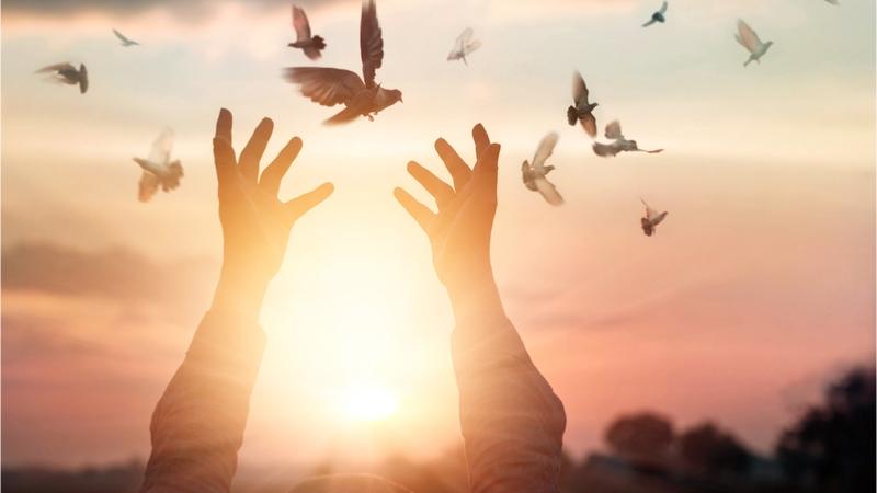 2019年度ソフィアシンポジウム 『平和、非核、人類文明の未来』〜宗教者・研究者による対話