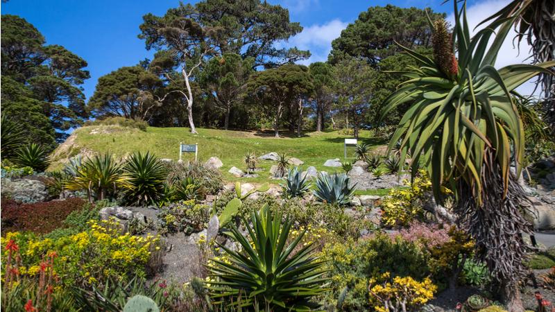 「植物園 俳句展」~植物園を詠む~ 作品募集ならびに開催