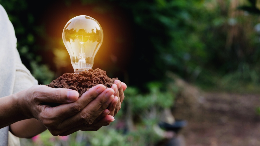 摂南大学サイエンスアート・ワークショップ 「廃棄される自然からエネルギーをつくろう-捨てられる植物が光合成をしてLEDランプを灯す!?-」