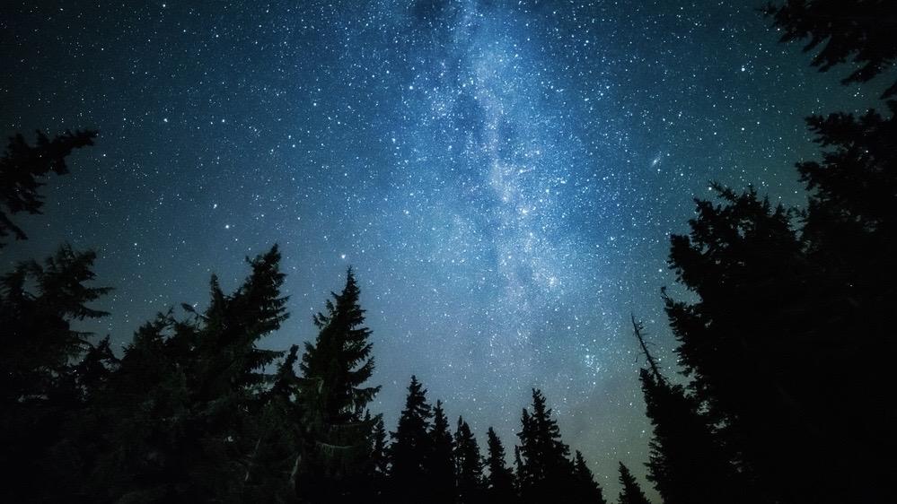 【京都大学】森林科学公開講座「宇宙と森林科学・木質科学」