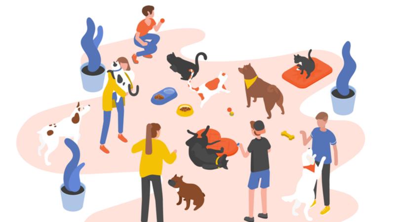 2019年度 連続講座 「野生動物を知る」 第8回 野生動物救護の今とこれから