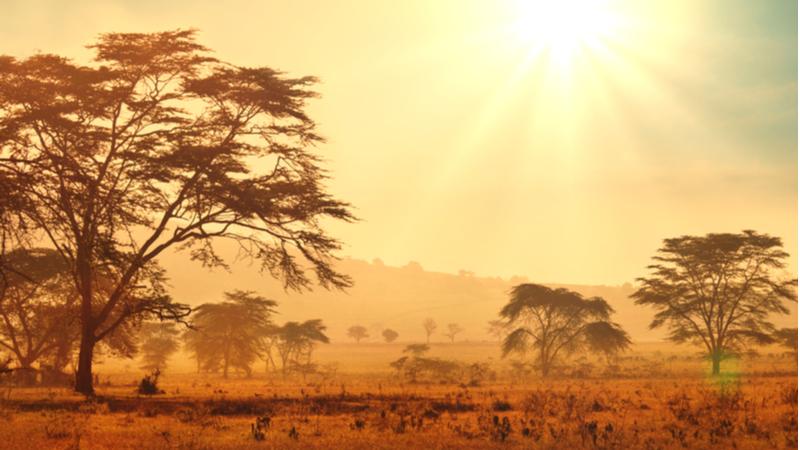 """国際ワークショップ「Thinking Resilience and Development from the """"Exceptional"""" Africa」"""