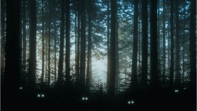 シンポジウム「山地の自然災害と森林科学 -最新研究の動向-」