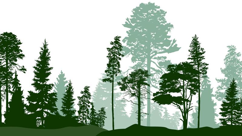 令和2年度愛知県緑化ポスター原画コンクール(小・中学生対象)作品募集